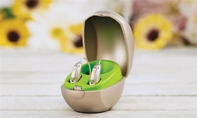 Le printemps du rechargeable